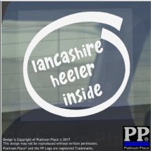 1 x Lancashire Heeler Inside-Window,Car,Van,Sticker,Sign,Adhesive,Dog,Pet,On,Board